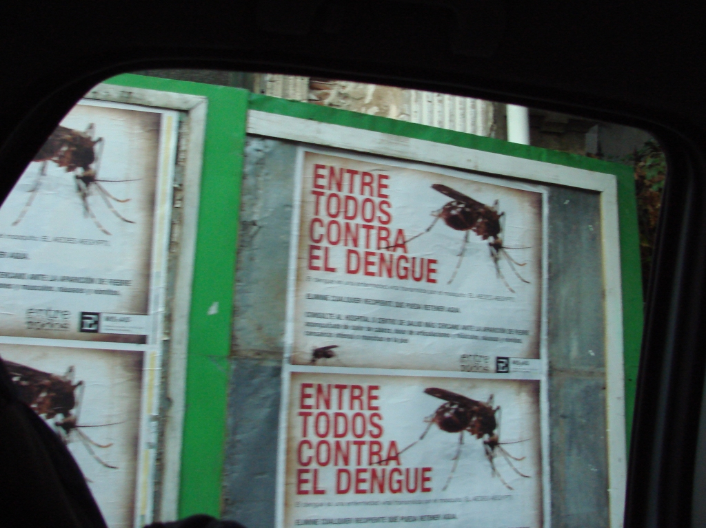 Posters warning of mosquito-transmitted dengue fever in Argentina.